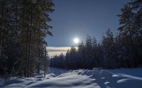 Картинка зима, лес, небо, снег, деревья, ели, сугробы, Финляндия