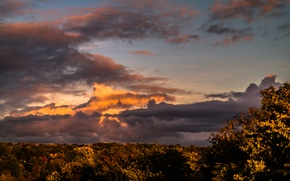 Картинка Clouds, Sky, Sunset, Autumn, Evening, View, Forest, Trees, Dusk