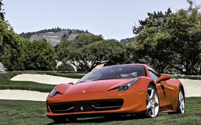 Картинка поле, деревья, красный, Ferrari, red, grass, феррари, 458, sky, италия, front, tree, 458 italia