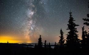 Картинка пространство, ночь, небо, млечный путь, деревья, космос, звезды