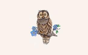Картинка листья, дерево, сова, птица, ветка, owl