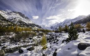 Обои autumn vs. winter, val morteratsch, pontresina