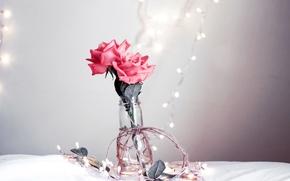 Картинка цветы, розы, ваза