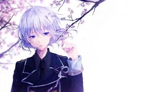 Картинка цветы, аниме, сакура, арт, парень, mokoppe, touken ranbu, honebami toshiro