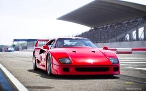 Картинка Красный, Авто, Машина, Феррари, Ferrari, F40, Суперкар, Трек, Supercar, Передок, Ferrari F40, F 40, Ferrari …