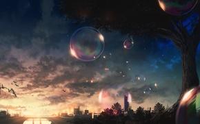 Картинка природа, город, мыльные пузыри