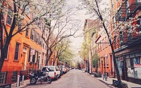 Картинка деревья, велосипед, улица, Нью-Йорк, мотоцикл, автомобили, Соединенные Штаты
