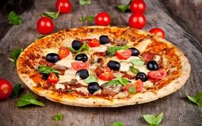 Картинка грибы, еда, сыр, листочки, пицца, помидоры, блюдо, маслины