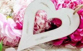 Картинка любовь, цветы, праздник, love, сердечко, heart, flowers, пионы, holiday, peonies