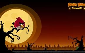 Картинка moon, halloween, sunset, Angry birds
