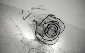 Картинка цветок, стекло, серый, роза