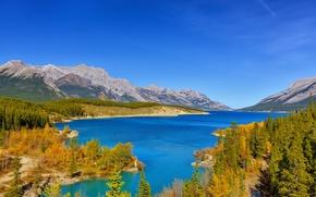 Картинка осень, лес, небо, деревья, горы, озеро