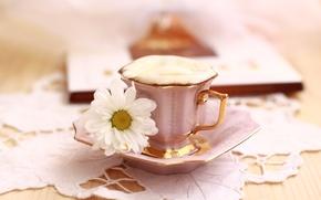 Обои цветы, утро, чашка, букет, кофе, натюрморт, завтрак, лето, корзина