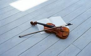 Обои violin, string musical instrument, струнный музыкальный инструмент, bow, смычок, скрипка