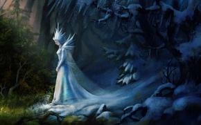 Обои холод, лед, снег, арт, природа, фантастика, снежная королева