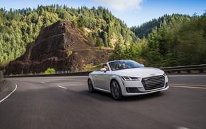 Картинка Audi, ауди, Roadster, родстер, quattro, TFSI, US-spec, 2015