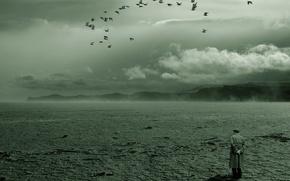 Картинка птицы, одиночество, Пустыня