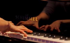 Картинка музыка, руки, рояль