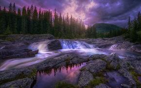 Картинка лес, деревья, закат, горы, ручей, камни, течение, вечер