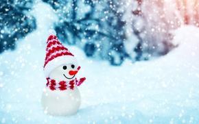 Обои winter, christmas, snow, snowman