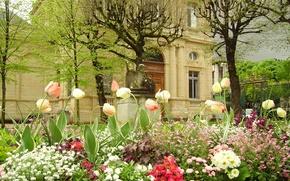 Картинка цветы, замок, Франция, сад