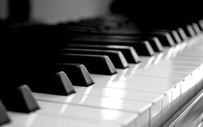 Обои рояль, клавиши, белые, черные