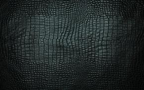 Картинка текстура, кожа, крокодил, черная
