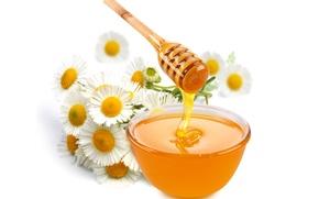 Обои цветы, белый фон, ромашки, мед, пиала, ложка