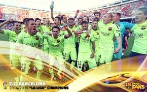 Картинка wallpaper, sport, football, FC Barcelona, La Liga Champions