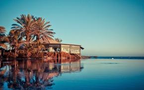 Картинка пальмы, океан, бассейн, курорт, Lopesan Costa Meloneras Resort
