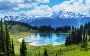 Обои Canada, Moraine, озеро, Banff National park, lake, лес, landscape