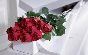 Обои цветы, подарок, розы