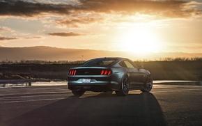 Картинка Mustang, Ford, Muscle, Car, Sunset, Wheels, Rear, 2015, Velgen, Beam