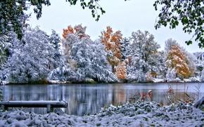 Картинка снег, природа, зима, деревья, листва, небо, трава, река