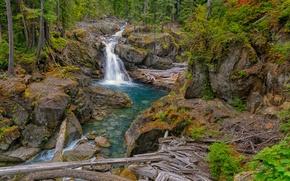 Картинка лес, река, скалы, водопад, Washington, Silver Falls, Packwood