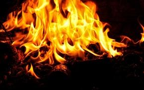 Картинка огонь, пламя, костер, полено