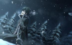 Картинка лес, снег, слезы, yuuki tatsuya, sword art online, kirito, мастера меча онлайн, sao, кирито