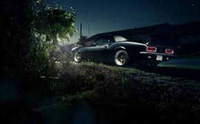 Картинка Chevrolet, Camaro, шевроле, мускул кар, muscle car, rear, камаро, LSX 454