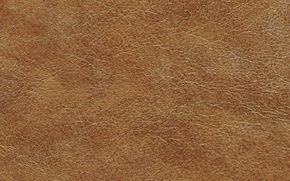 Обои кожа, leather, texture, skin