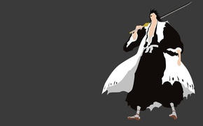 Картинка demon, sword, white, game, Bleach, devil, grey, anime, katana, man, captain, asian, warrior, manga, japanese, …