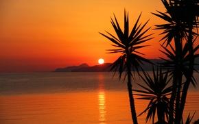 Картинка море, закат, горы, пальмы