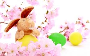 Картинка праздник, кролик, пасха, разноцветные яички, цветы вишни