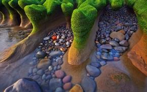 Картинка море, берег, камни. водоросли