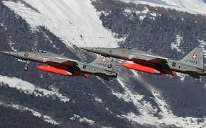 Картинка истребители, Tiger II, F-5E, многоцелевые, «Тайгер» II