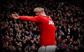 Картинка футбол, Англия, england, football, manchester united, premier league, wayne rooney