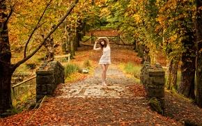 Картинка осень, парк, Cassie, Colour of my Dreams