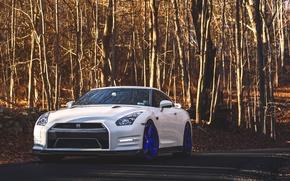 Картинка GTR, Nissan, Blue, R35, Wheels, Incurve, LP-5