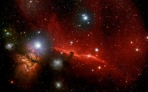 Обои тёмная туманность, в созвездии, Конская Голова, Ориона