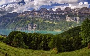 Картинка деревья, горы, озеро, Швейцария, Альпы, луг, панорама, Switzerland, Alps, озеро Валензе, Walensee, Lake Walen