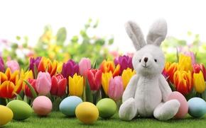 Картинка яйца, кролик, Пасха, тюльпаны, flowers, tulips, spring, Easter, eggs, bunny